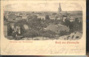Eberswalde Panorama Blick vom Sanatorium Drachenkopf Kirche Kat. Eberswalde