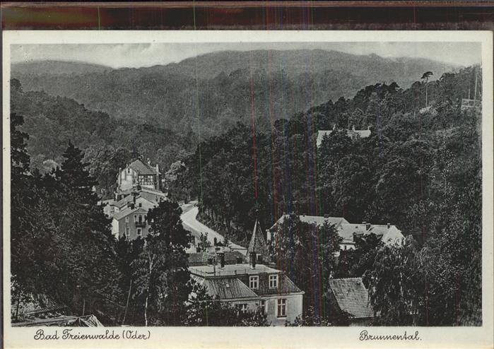 Bad Freienwalde Blick ins Brunnental Kat. Bad Freienwalde