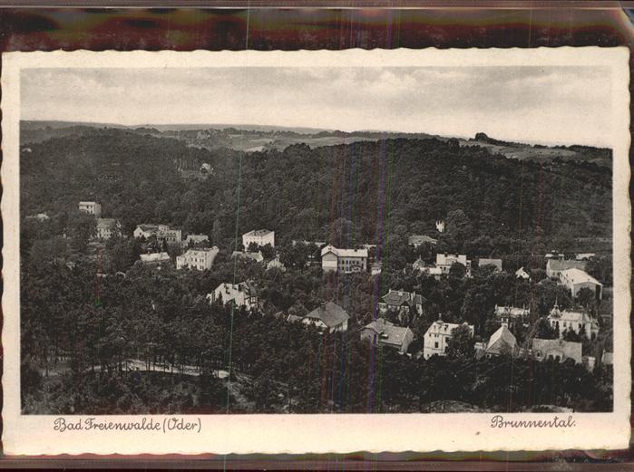 Bad Freienwalde Partie im Brunnental Kat. Bad Freienwalde