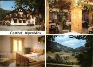 Schwarzau Gebirge Gasthof Alpenblick Kat. Schwarzau im Gebirge