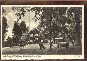 Tambach Dietharz Forst Gasthaus Nesselberg Hirsche Kat. Tambach Dietharz