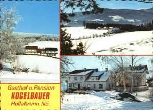Hollabrunn Gasthof Pension Kogelbauer Winterimpressionen Kat. Hollabrunn