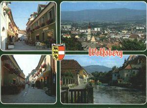 Wolfsberg Kaernten Teilansichten Panorama Wappen Kat. Wolfsberg