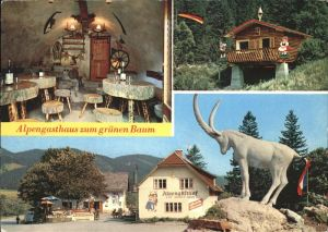 Schwarzau Gebirge Forellen Backhendelstation Alpengasthof Zum Gruenen Baum Kat. Schwarzau im Gebirge
