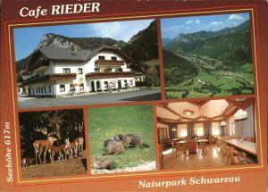 Schwarzau Gebirge Cafe Rieder Naturpark Wild Hirsch Kat. Schwarzau im Gebirge