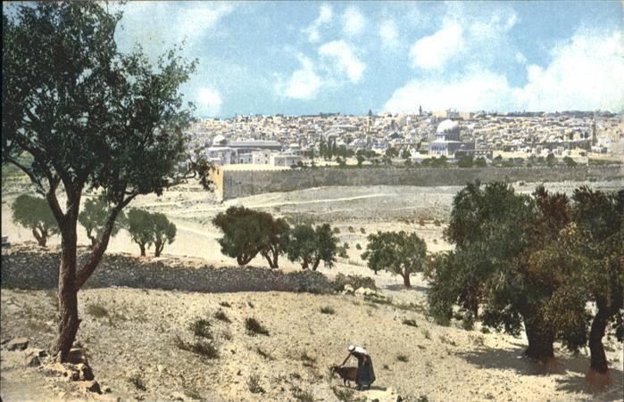 Jerusalem Yerushalayim Jerusalem Olivet Oelberg Mont Oliviers * / Israel /