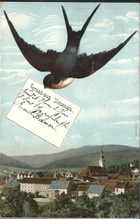 Schwalbenkarte Ilmenau Ottmar Zieher Verlag Kat. Rahmenkarte