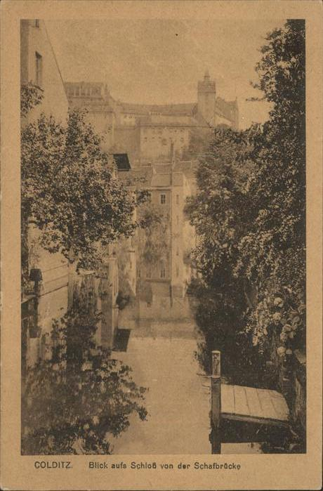 Colditz Blick auf Schloss von der Schafbruecke Kat. Colditz