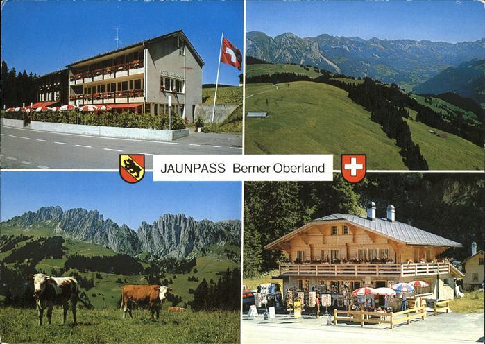 Jaunpass Hotel des Alpes Kat. Jaun 0