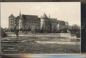Torgau Schloss Hartenfels Elbe Trinks Postkarte Kat. Torgau