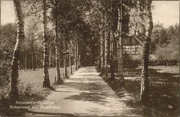 Hohenstein Ernstthal Birkenweg mit Forsthaus Kat. Hohenstein Ernstthal