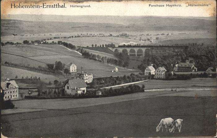 Hohenstein Ernstthal Huettengrund Forsthaus Haynholz Huettenmuehle Kat. Hohenstein Ernstthal
