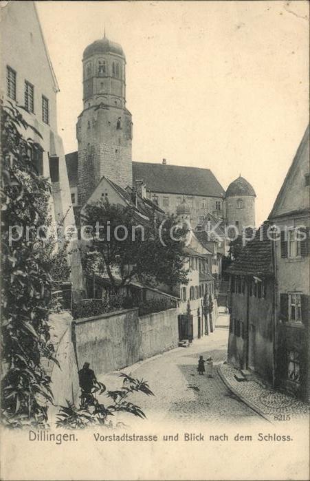 Dillingen Donau Vorstadtstrasse mit Blick zum Schloss Kat. Dillingen a.d.Donau