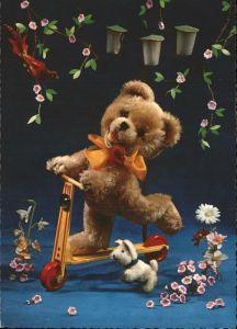 Teddy Teddybaer Teddy bear Roller Hund Vogel Blumen Kat. Kinderspielzeug