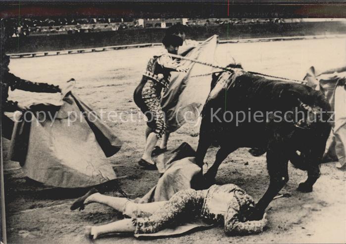 Stierkampf Torero Stier Kat. Sport