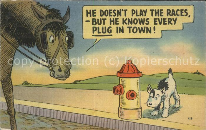 Humor Pferd Hund / Humor /