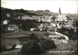 Reichenau Muehlkreis Ortsansicht mit Kirche Sommerfrische Kat. Reichenau im Muehlkreis