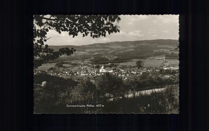 Poellau Sommerfrische Panorama Kat. Poellau Steiermark 0