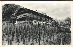 Stainz Gasthof Engelweingarten Kat. Stainz