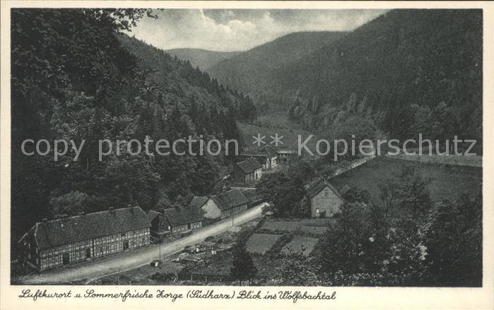Zorge Blick ins Wolfsbachtal Luftkurort Sommerfrische Kat. Zorge
