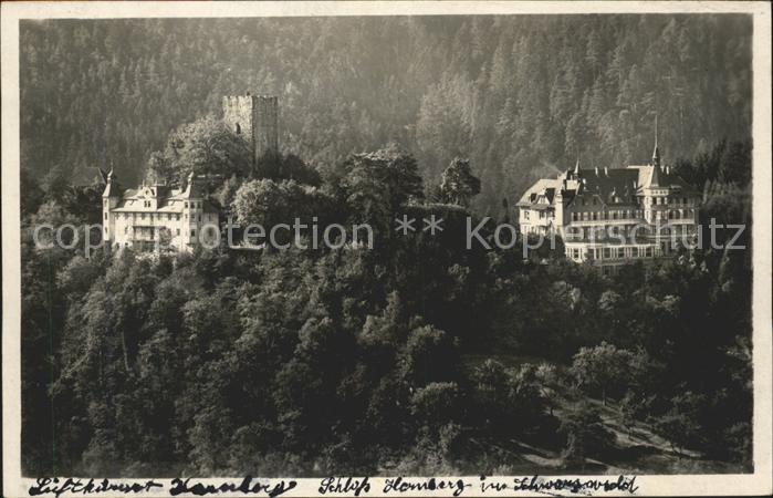 Hornberg Schwarzwald Schloss Hornberg Schwarzwaldbahn Kat. Hornberg