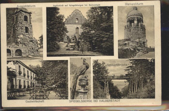 Spiegelsbergen Aussichtsturm Bismarckturm Jagdschloss Schluchtbruecke / Halberstadt /Harz LKR
