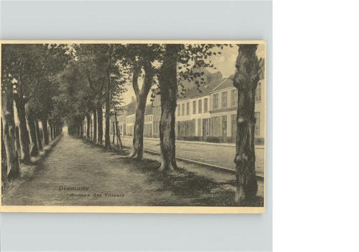 Dixmude Avenue des Tilleuls Kat.