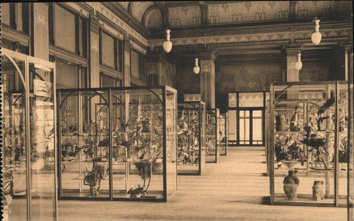 Anvers Antwerpen Palais des Fetes (Museum) Kat.