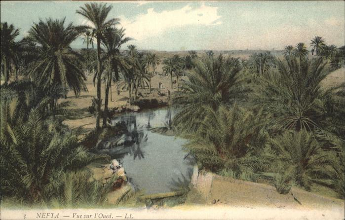 Nefta Sur l'Oued / Tunesien /