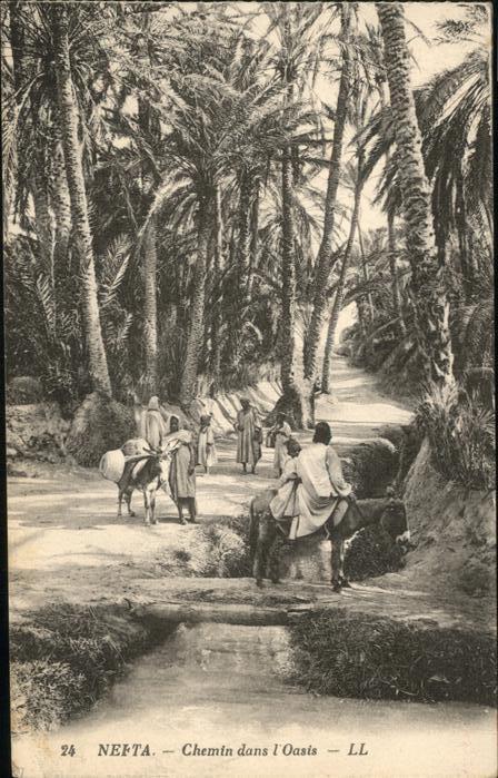 Nefta Chemin dans l`Oasis / Tunesien /