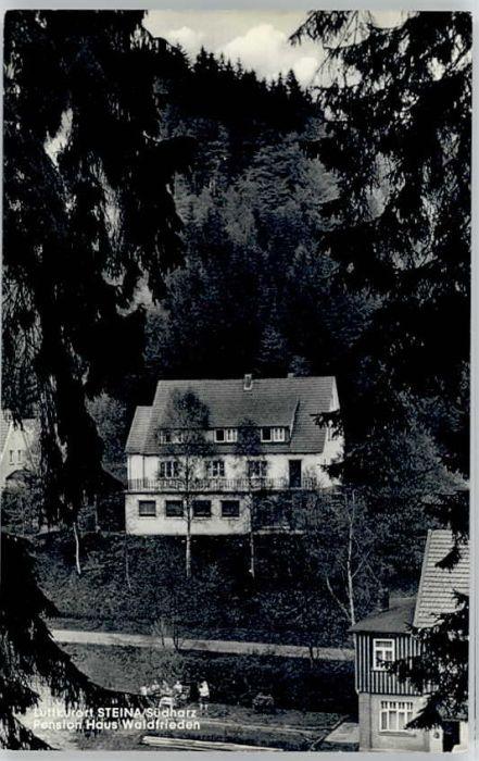 Steina Suedharz Steina Suedharz Pension Haus Waldfrieden * / Bad Sachsa /Osterode Harz LKR
