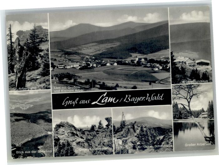 Lam Oberpfalz Lam  * / Lam /Cham LKR