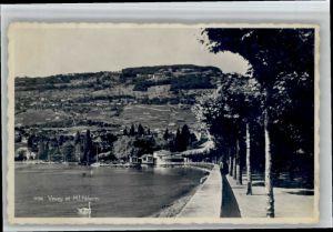 Mont Pelerin Mont Pelerin  * / Mont Pelerin /Rg. Chatel-St-Denis