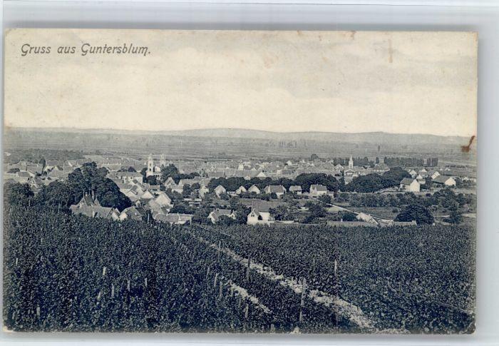 Guntersblum Guntersblum  x / Guntersblum /Mainz-Bingen LKR