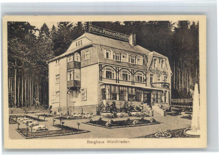 Masserberg Masserberg Hotel Pension Waldfrieden x / Masserberg /Hildburghausen LKR