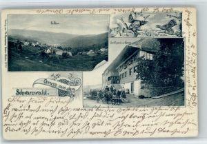 Falkau Falkau Gasthaus zur Krone x / Feldberg (Schwarzwald) /Breisgau-Hochschwarzwald LKR