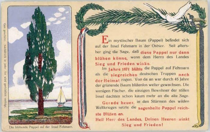 Fehmarn Fehmarn Pappel x / Fehmarn /Ostholstein LKR