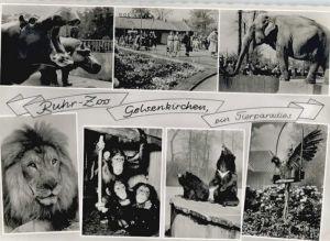 Gelsenkirchen Gelsenkirchen Ruhr-Zoo x / Gelsenkirchen /Gelsenkirchen Stadtkreis