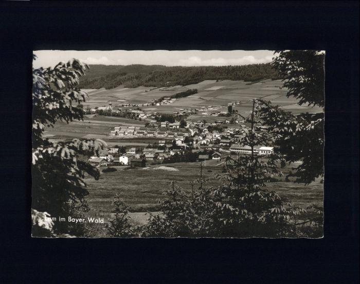 Lam Oberpfalz Lam  x / Lam /Cham LKR
