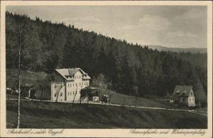 Schwarzenberg Erzgebirge Schwarzenberg Erzgebirge Steinheidel x / Schwarzenberg /Erzgebirgskreis LKR
