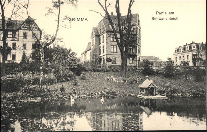 Grimma Grimma Schwanenteich * / Grimma /Leipzig LKR