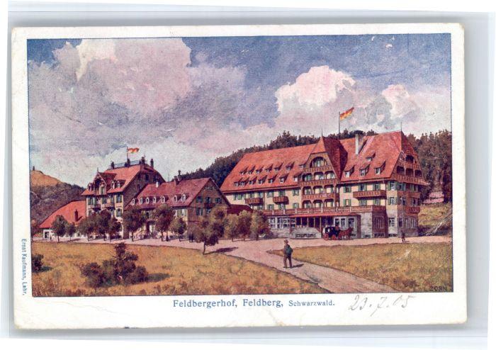 Feldberg Schwarzwald Feldberg Schwarzwald Feldbergerhof Kuenstler L Zorn x / Feldberg (Schwarzwald) /Breisgau-Hochschwarzwald LKR