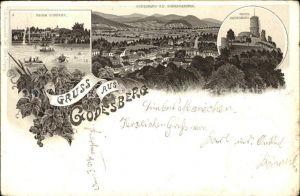 Bad Godesberg Godesberg und Siebengebirge Ruine Godesberg Kurpark Kat. Bonn