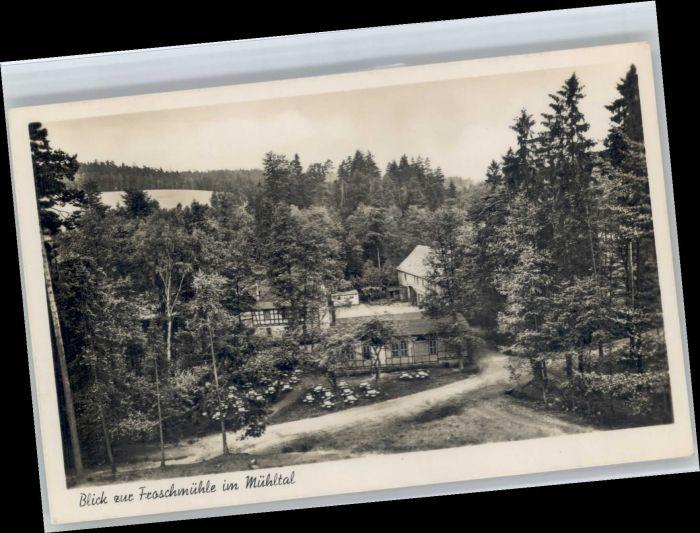 Eisenberg Thueringen Eisenberg Muehltal Froschmuehle * / Eisenberg /Saale-Holzland-Kreis LKR