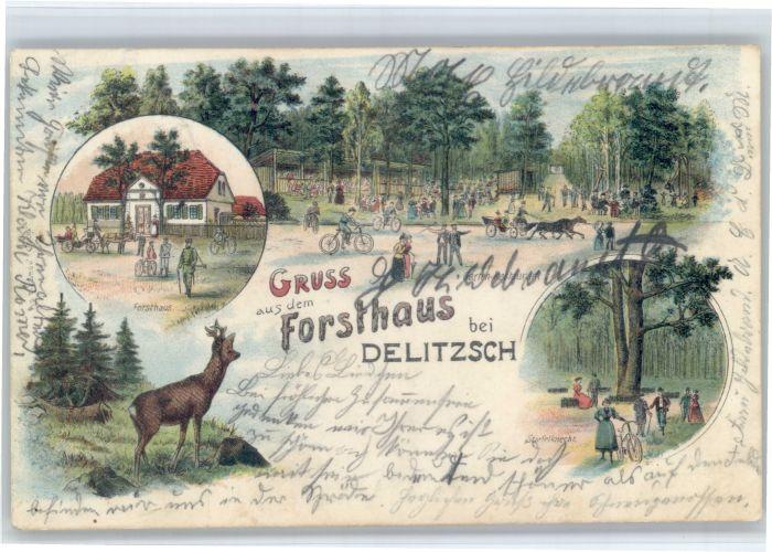 Delitzsch Delitzsch Forsthaus Hirsch x / Delitzsch /Nordsachsen LKR