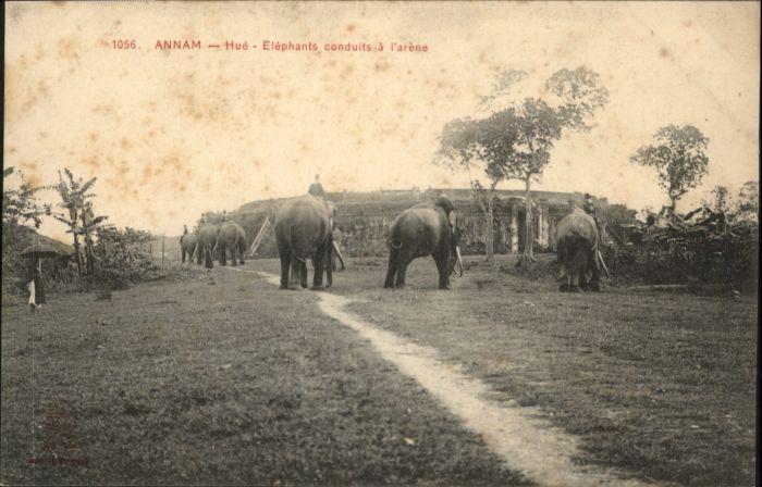 Hue Annam Elephants conduits Arene *