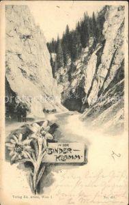 Schwarzau Gebirge Partie in der Binderklamm Schlucht Kat. Schwarzau im Gebirge
