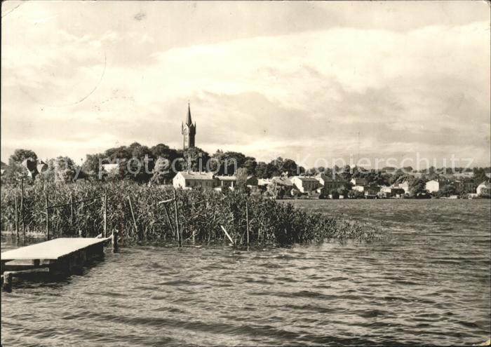 Feldberg Mecklenburg Partie am Haussee Kat. Feldberger Seenlandschaft
