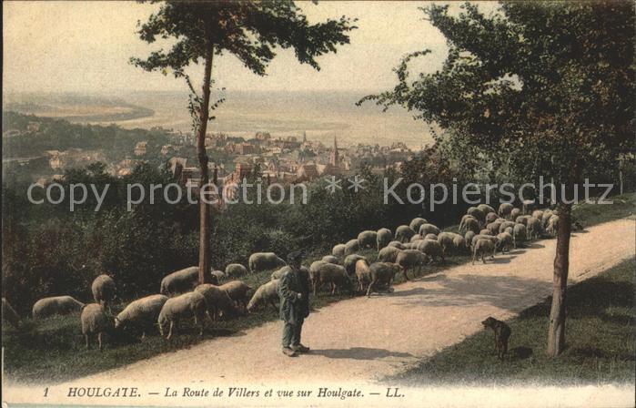 Houlgate Vue panoramique de la Route de Villers Moutons Kat. Houlgate
