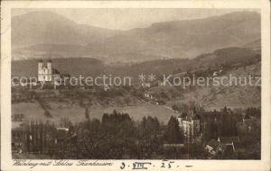 Weiz Steiermark Weizberg mit Schloss Thanhausen Kat. Weiz